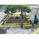 بازسازی حیاط خانه