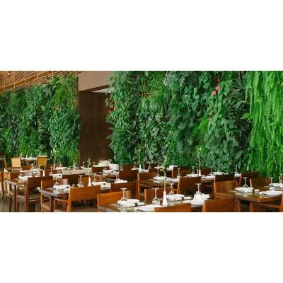 پروژه دیوار سبز