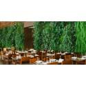 پروژه دیوار سبز داخلی