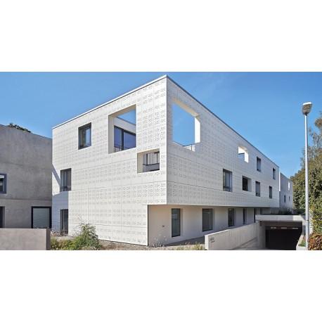 پروژه ساختمان پاسیو راینفلدن