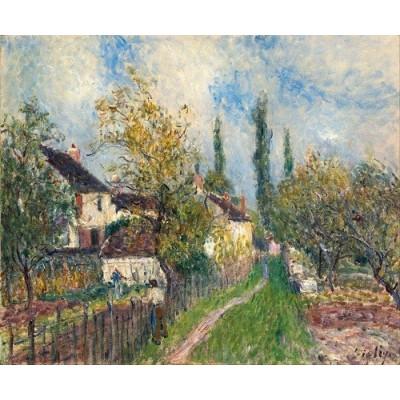 بوم نقاشی pa-art کد509