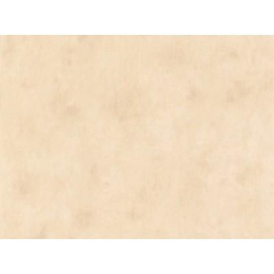 کاغذ دیواری آلمانی کد 688811