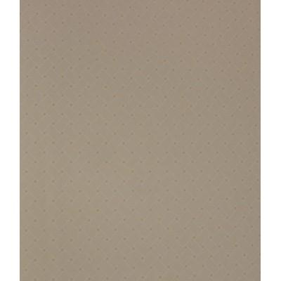 کاغذ دیواری روستر AP517206
