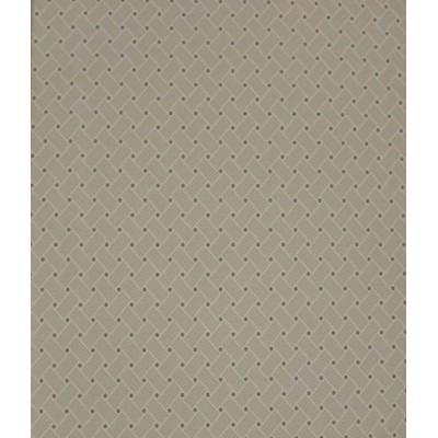 کاغذ دیواری روستر AP517210