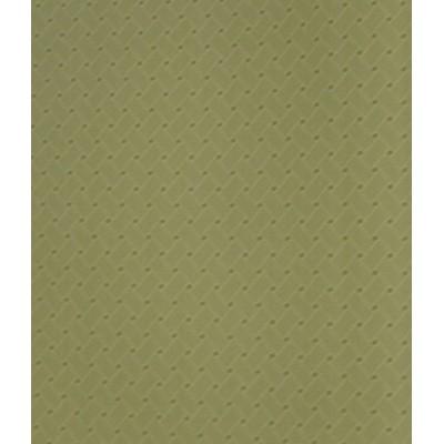 کاغذ دیواری روستر AP517212
