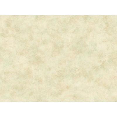کاغذ دیوارئ آمریکایئ