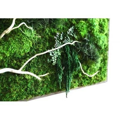 پروژه دیوار سبز رستوران ووک هلند
